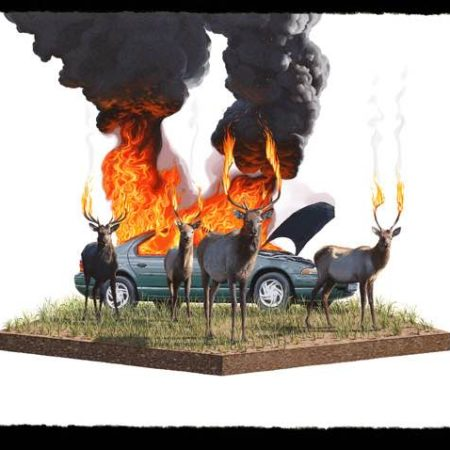 Josh Keyes - Graffiti In Strange Places